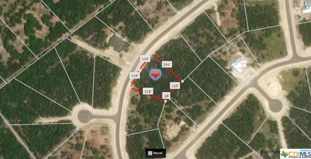 1460 Merlot, New Braunfels, TX 78132 (MLS #353699) :: Magnolia Realty