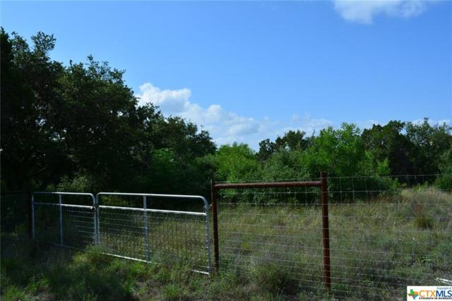 1630 & 1650 Oblate Drive, Canyon Lake, TX 78133 (MLS #353749) :: Texas Premier Realty