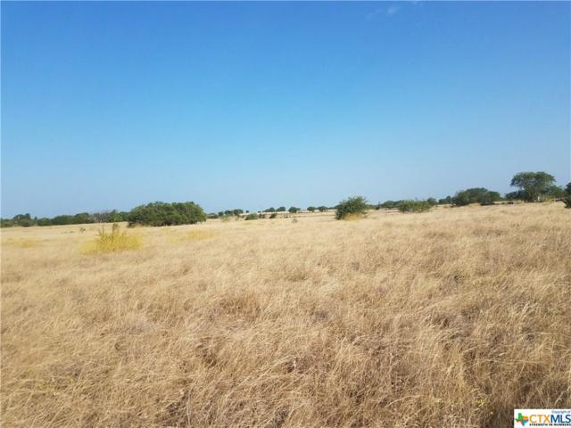 unassigned 7.9 acres Cr 281, Gatesville, TX 76528 (MLS #353752) :: The Real Estate Home Team