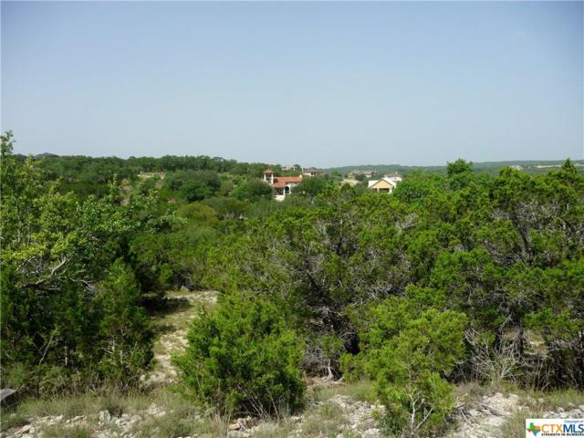 2100 Bella Vista, Canyon Lake, TX 78133 (MLS #353867) :: Erin Caraway Group