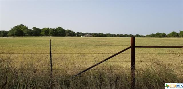 11144 Flint Creek Road, Gatesville, TX 76528 (MLS #354005) :: Texas Premier Realty