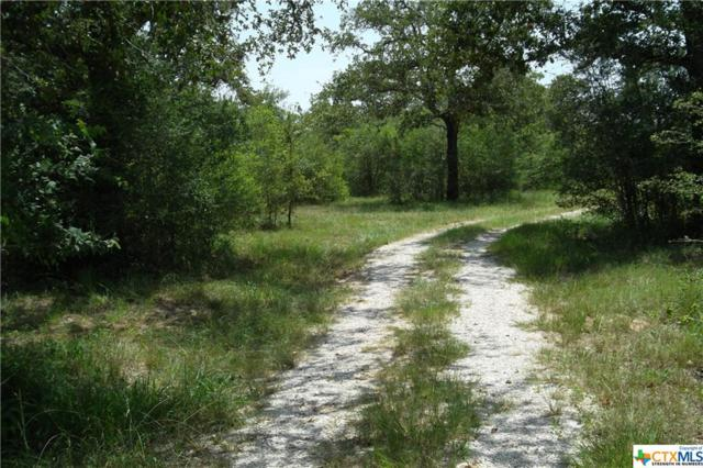 395 Sunset Rd, Goliad, TX 77963 (MLS #354200) :: Magnolia Realty