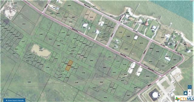 00 Tbd, Port Lavaca, TX 77979 (MLS #354301) :: Kopecky Group at RE/MAX Land & Homes