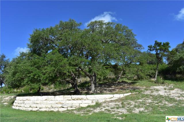0 Serene Street, Spring Branch, TX 78070 (MLS #354376) :: Magnolia Realty