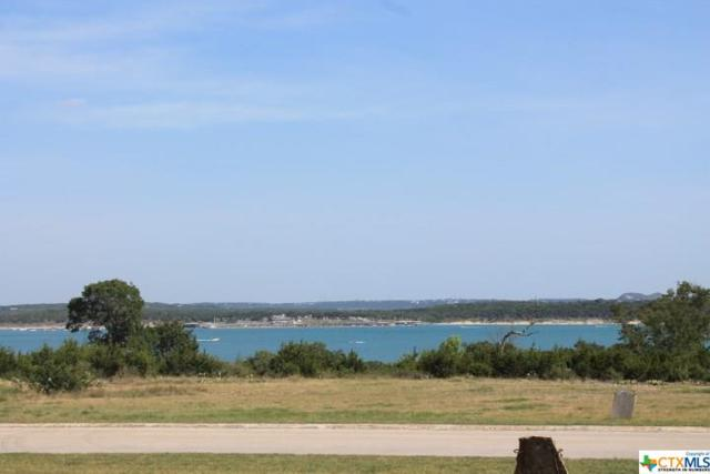 1165 Brads Flight, Canyon Lake, TX 78133 (MLS #354463) :: Erin Caraway Group