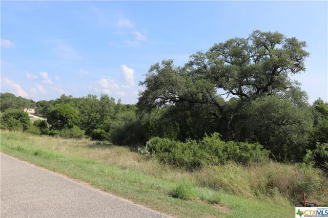2111 Granada Hills, New Braunfels, TX 78132 (MLS #354511) :: Erin Caraway Group