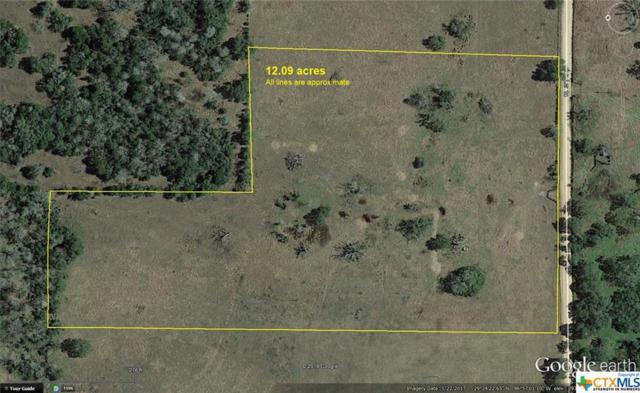 530 County Road 1A, Hallettsville, TX 79954 (MLS #354801) :: RE/MAX Land & Homes