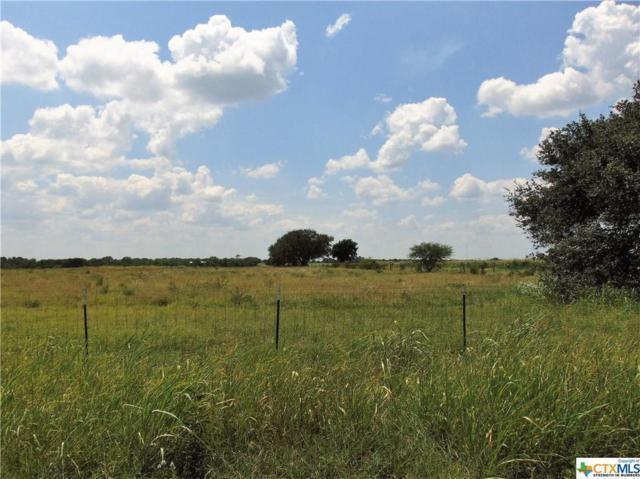 000 Hwy 183 Lot 3, Goliad, TX 77963 (MLS #354844) :: Kopecky Group at RE/MAX Land & Homes