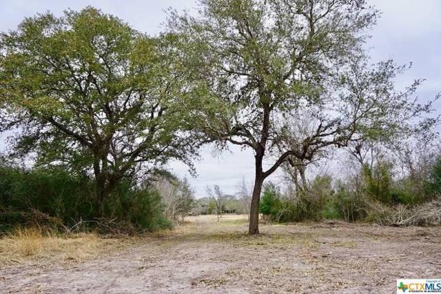 307 N Fort St. Street #1, Goliad, TX 77963 (MLS #354987) :: RE/MAX Land & Homes