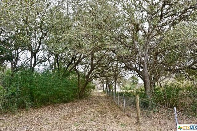 303 N Fort St Street #4, Goliad, TX 77963 (MLS #354992) :: Kopecky Group at RE/MAX Land & Homes