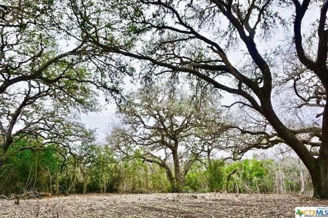 604 E Oak Street #3, Goliad, TX 77963 (MLS #355001) :: Magnolia Realty