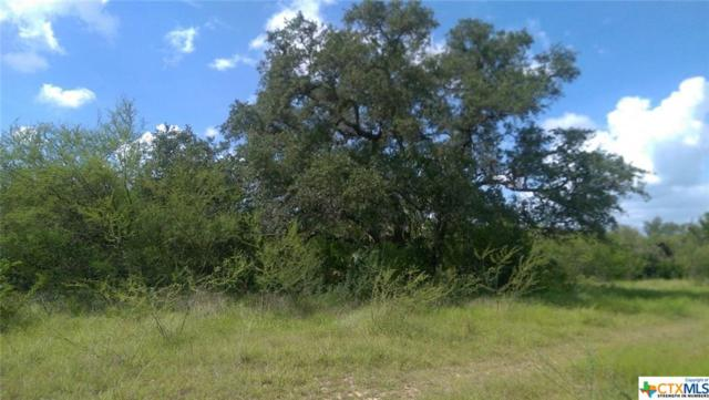 1934 South River Road, Cuero, TX 77954 (MLS #355018) :: Kopecky Group at RE/MAX Land & Homes