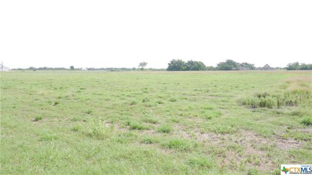 000 Wright Street, Goliad, TX 77963 (MLS #355080) :: Kopecky Group at RE/MAX Land & Homes