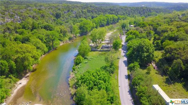 7462 River Road, New Braunfels, TX 78132 (MLS #355269) :: Erin Caraway Group