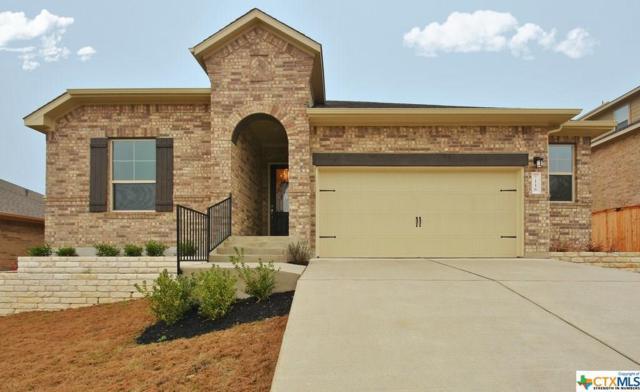 116 Gallatin Drive, Kyle, TX 78640 (#355404) :: Realty Executives - Town & Country