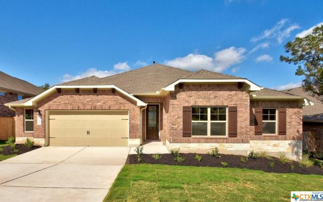 285 Cypress Forest Drive, Kyle, TX 78640 (MLS #355427) :: Erin Caraway Group