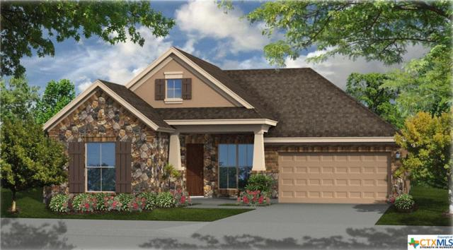 350 Cypress Forest Drive, Kyle, TX 78640 (MLS #355430) :: Erin Caraway Group