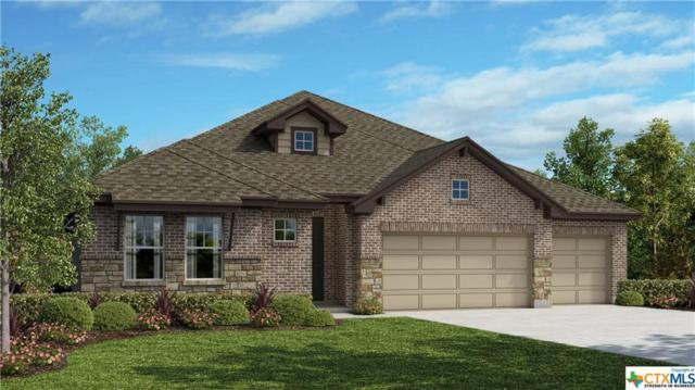 265 Arapaho Drive, Kyle, TX 78640 (MLS #355441) :: Erin Caraway Group