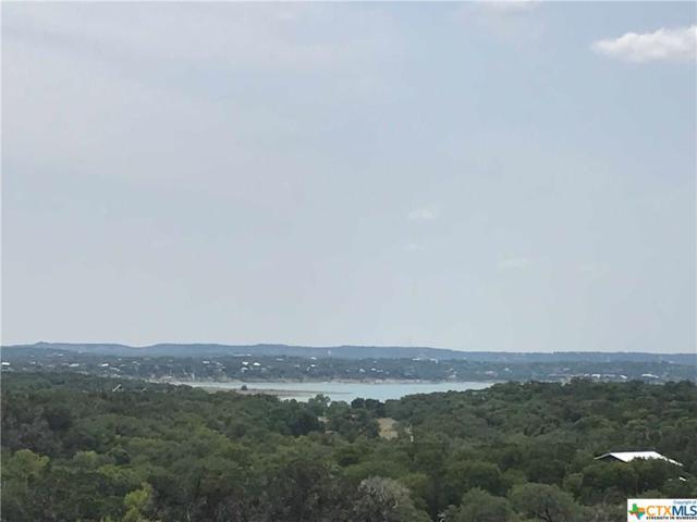1676 Lake Ridge, Canyon Lake, TX 78133 (MLS #355477) :: Magnolia Realty
