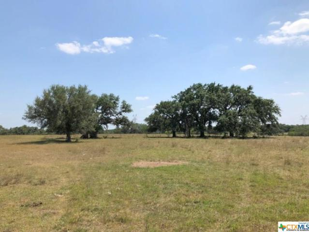 8140 Fm 1726, Goliad, TX 77963 (MLS #355536) :: Kopecky Group at RE/MAX Land & Homes