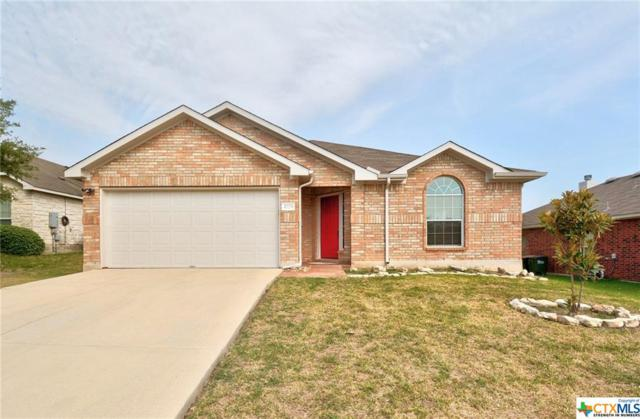 1725 Amberwood, Kyle, TX 78640 (MLS #355640) :: Erin Caraway Group