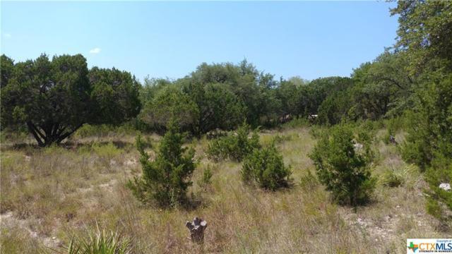 188 Scarlet Court, Canyon Lake, TX 78133 (MLS #355734) :: Erin Caraway Group