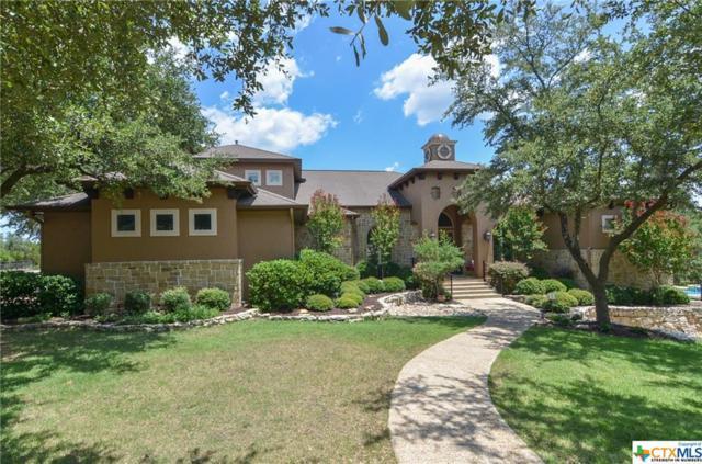1519 Frontier, Spring Branch, TX 78070 (MLS #355777) :: Magnolia Realty