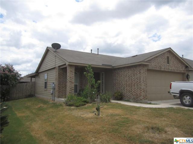 238 Wild Plum, San Marcos, TX 78666 (MLS #356107) :: Erin Caraway Group
