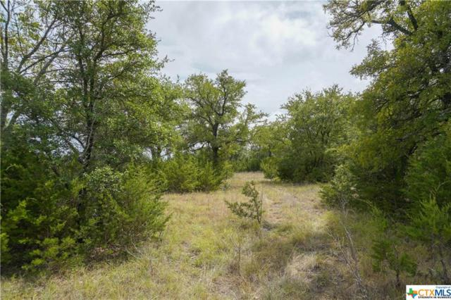 209 Chicktown Road, Gatesville, TX 76528 (MLS #356266) :: Kopecky Group at RE/MAX Land & Homes