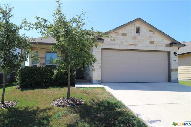 977 Lauren, New Braunfels, TX 78130 (MLS #356348) :: The Suzanne Kuntz Real Estate Team
