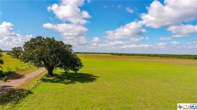 783 Ewing, Goliad, TX 77963 (MLS #356392) :: Kopecky Group at RE/MAX Land & Homes