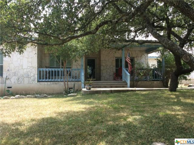 1130 Cedar Crest Dr, Canyon Lake, TX 78133 (MLS #356455) :: Erin Caraway Group