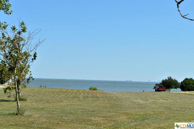 1 Pinewood, Port Lavaca, TX 77979 (MLS #356546) :: Kopecky Group at RE/MAX Land & Homes