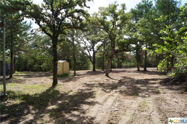 00 County Road 444/ Pvt 4007, Hallettsville, TX 77964 (MLS #356692) :: Kopecky Group at RE/MAX Land & Homes