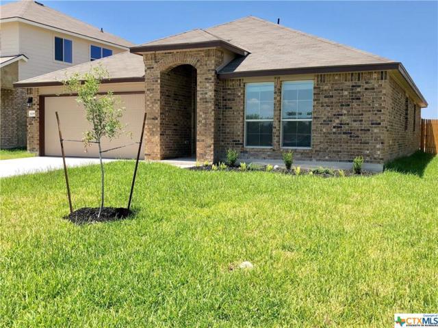 6208 Tess Road, Temple, TX 76502 (MLS #356725) :: Magnolia Realty