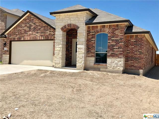 6224 Tess Road, Temple, TX 76502 (MLS #356735) :: Magnolia Realty