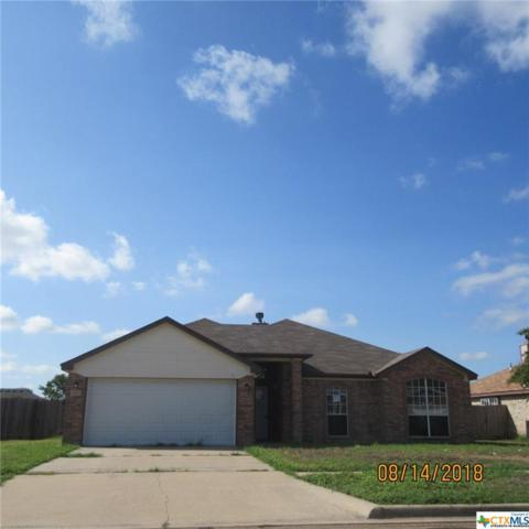 4506 Crested Butte Drive, Killeen, TX 76542 (MLS #356759) :: Kopecky Group at RE/MAX Land & Homes