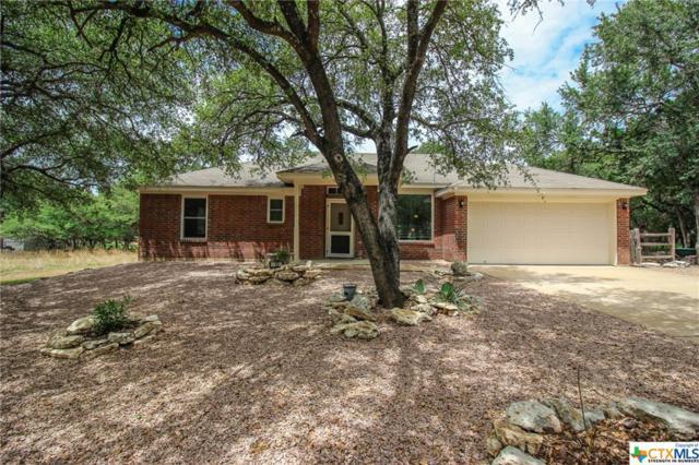 13 Magnolia Court, Belton, TX 76513 (MLS #356763) :: Magnolia Realty