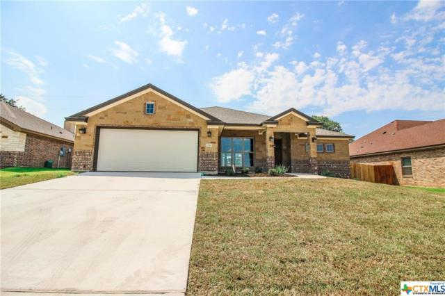 2961 S Mystic Mountain Lane, Belton, TX 76513 (MLS #356850) :: Magnolia Realty