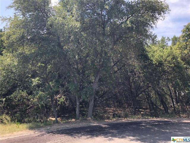 535 Ridgerock, Canyon Lake, TX 78133 (MLS #356879) :: The i35 Group