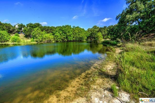 1556 Canyon Lake, Canyon Lake, TX 78133 (MLS #356994) :: Vista Real Estate