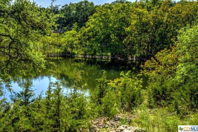 1544 Canyon Lake, Canyon Lake, TX 78133 (MLS #357015) :: Vista Real Estate