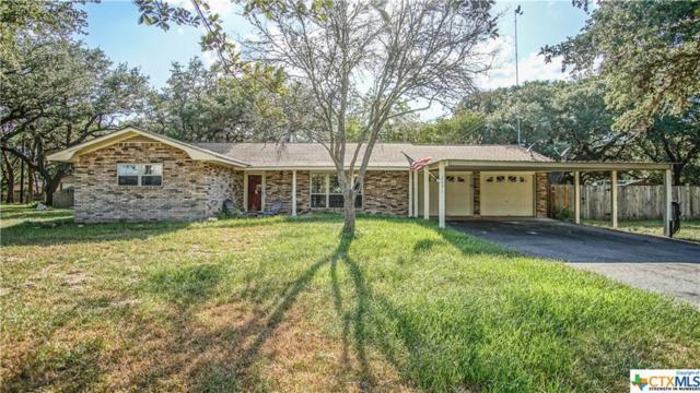 2692 State Highway 119, Yorktown, TX 78164 (MLS #357180) :: RE/MAX Land & Homes