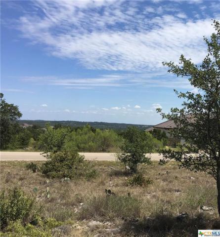 308 Copper Crest, New Braunfels, TX 78132 (MLS #357233) :: Vista Real Estate