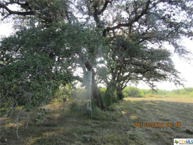 57 Diebel Road, Weesatche, TX 77993 (MLS #357298) :: RE/MAX Land & Homes