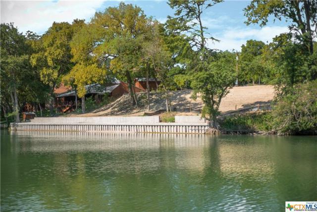 TBD Turtle Lane, Seguin, TX 78155 (MLS #357418) :: The Suzanne Kuntz Real Estate Team
