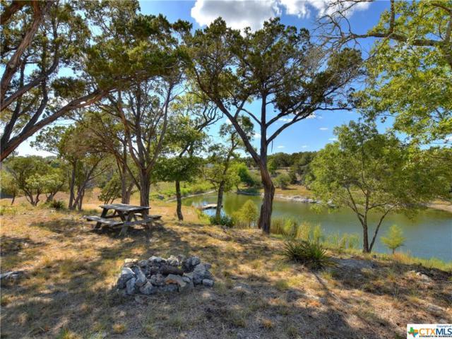 6028 Mustang Valley Trail, Wimberley, TX 78676 (MLS #357467) :: Erin Caraway Group