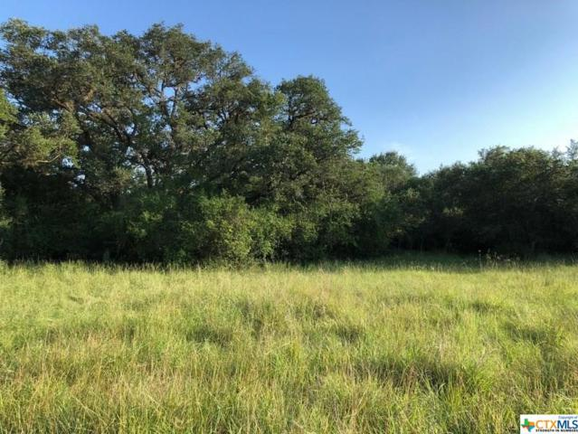 000 Post Oak Circle, Inez, TX 77968 (MLS #357563) :: Kopecky Group at RE/MAX Land & Homes