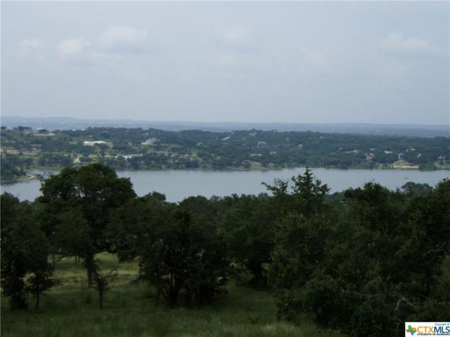 1590 Bella Vista, Canyon Lake, TX 78133 (MLS #357579) :: Erin Caraway Group