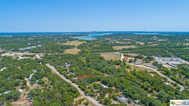 235 Sir Arthur, Canyon Lake, TX 78133 (MLS #357593) :: RE/MAX Land & Homes